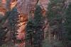 Arizona - Oak Creek Canyon (Michael.Kemper) Tags: canon eos 6d canoneos6d canonef2470f4lisusm ef 2470 f4l f4 l is usm voyage travel travelling reise usa us united states america vereinigte staaten von amerika american southwest amerikanischer südwesten arizona west fork oak creek canyon trail hike hiking wanderung wandern rock rocks fels felsen red orange rot schlucht tree trees baum bäume sandstone sandstein randonnée randonnee sedona