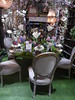 Chicago, Navy Pier, Chicago Flower & Garden Show, The Living Library (Mary Warren 10.2+ Million Views) Tags: chicago navypier chicagoflowergardenshow nature flora plants blooms blossoms flowers table chairs tablesetting lamps