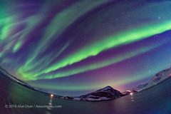 Purple Auroral Curtains from Norway (Amazing Sky Photography) Tags: auroraborealis northernlights twilight norway purple hurtigruten nordnorge tromso sea ship bigdipper ursamajor orion curtains ribbons leo alberta canada