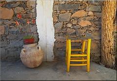 at the Tigmi Bulbul (mhobl) Tags: tigmibulbul hotel amtoudi maroc morocco chair hocker tabouret vase flowers wall stones tree terrace