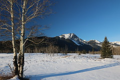 Looks like a great day for a walk through the mountains (davebloggs007) Tags: bow valley park south alberta kananaskis canada