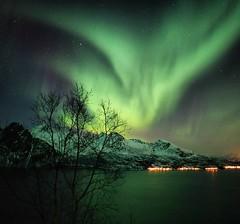 Green evening (dinni69) Tags: nordlys grytøya norway skye norge harstad auroraborealis