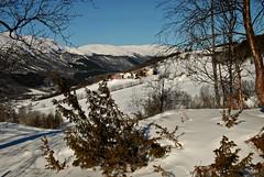 Bjørgan (KvikneFoto) Tags: landskap vinter winter snø snow norge natur hedmark kvikne tamron nikon