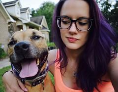 Dragula (The Elizabeth) Tags: smile pitbull dragula sunnyday purplehair bestfriend