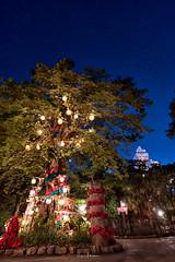 Tokyo Disneysea 2017 75 - Christmas Tree (JUNEAU BISCUITS) Tags: themepark disney disneyresort disneyparks nikon nikond810 japan waltdisney tokyodisneysea disneysea