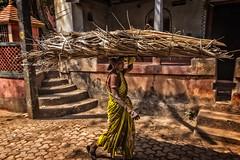 GOKARNA: FUTURS PANIERS (pierre.arnoldi) Tags: inde india gokarna karnataka pierrearnoldi photographequébécois photoderue photocouleur photooriginale photodevoyage portraitdefemme scène de rue on1photoraw2018 canon6d objectiftamron