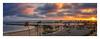 Newport Beach Harbor (Roving Vagabond aka Bryan) Tags: explore coronadelmar sunset clouds newportbeach ocean landscape cloulds sand water sky sunburst sea tree grass