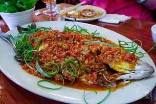 Sichuan Steamed Fish - Sichuan Gourmet