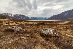 Burnt Heather (robinta) Tags: landscape scotland lochmuick glenmuick ballater heather mountains rock moors outdoors loch lake ngc canon 200 canon1018mm