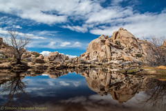 Joshua Tree National Park - Barker Dam (simone_a13) Tags: usa unitedstates california jtnp joshuatreenationalpark barkerdam desert highdesert lake water reflection geology rock landscape