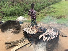 Obongi_ferry_smoking_fish (FAO Forestry) Tags: fao un uganda refugees unhcr world bank environment energy south sudan woodfuel forestry