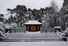 Temple (StephanExposE) Tags: paris iledefrance france stephanexpose jardin jardindagronomietropicale garden parc park neige snow blanc white canon 600d 1635mm 1635mmf28liiusm