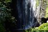 Waimoku Falls at Kipahulu : 'Valley Isle Excursions'– the incredible Maui tour to Hana…and Haleakalā. (biswarupsarkar72) Tags: hawaii pacificocean pacificislands pacificseabeaches maui usa tourisminusa travellinginusa sea seabeaches wailea grandwailea nikon nikond7000 samsung samsungmobilephotography samsungmobileon7pictures nikonphotography islandsinpacificocean passionoftravellinginusa photojournalism biswarupsarkar biswarupsphotography biswarupsphotographicjourney islandsofhawaii toursinhawaii tourisminhawaii charmsofhawaii natureofhawaii travellinginhawaii experienceinhawaii pacific pacificbeauty enchantinghawaii valleyisleexcursion haleakalanationalpark hana