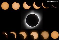 Solar Eclipse - August 21, 2017 (pniselba) Tags: sun sol eclipse 21delagosto agosto 2017 estadosunidos usa casper wyoming