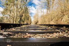 Deep view (Sony_Fan) Tags: deep view railway landscape sony alpha 6000 sigma 19mm 28 art winter thomas umbach 2018