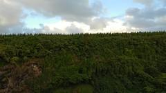 Hawaii USA - Kauai Island. Wailua Falls Video (Feridun F. Alkaya) Tags: hawaii kauaiisland wailuafalls kauaisspirit forest waimeacanyonstatepark waimea waimeacanyon hawaiiisland ngc landscape canyon road kauaı grass soil aloha water rock tree waterfall wood river
