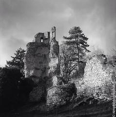 Deconstruction. (renphotographie) Tags: analog argentique film120 xtol renphotographie ruines abandonné château fomapan400 monochrome saintaubinducormier hasselblad