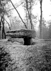Le dolmen du Lac d'Aurié (AJ Mitchell) Tags: holga dolmen megalith ilforddelta3200 120film quercy limogne snow prehistory prehistoric neolithic garrigue causse lofi lomo lomography
