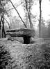 Le dolmen du Lac d'Aurié (AJ Mitchell) Tags: holga dolmen megalith ilforddelta3200 120film quercy limogne snow prehistory prehistoric neolithic garrigue causse lofi