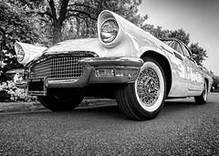 Classic Beauty (Wes Iversen) Tags: autofest blackwhite frankenmuth michigan thunderbird tokina1116mmf28 autos cars chrome classiccars monochrome transportation trees vehicles