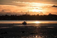 26 mar 2018 - photo a day (slava.connect) Tags: photoaday 365 dailyphoto 1day auckland nz newzealand sunrise beach boat