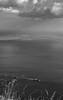 """SDIM9589 - sd9 - """"Sfida"""" - mamiya sekor 50mm f2 m42 (ciro.pane) Tags: sigma sd9 foveon temporale arrivo sfida vento mare gabbiani volo nave carico promontorio punta campanella italia italy italien italie mamiya sekor 50mm f2 m42 paesaggio primaverile bianco nero"""
