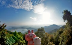 view from moutain (Raiden8705) Tags: usagi piske nature toy toyphotography day