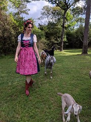 Goat Herder (seweccentric) Tags: goats cowgirl dirndl texas trachten