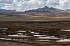 7X7A2167 (wcsperu) Tags: puno laguna diegoperez pastogrande humedal bofedal paisaje