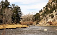 A River Runs Through It (Patricia Henschen) Tags: mtprinceton nathrop nationalmonument brownscanyon chaffeecounty rubymountain coloradoparkswildlife backroads backroad rural arkansasriver arkansasheadwatersrecreationarea mountains mountain collegiatepeaks sawatch range river spring