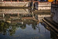 GOKARNA : LE LAC KOTI TEERTHA (pierre.arnoldi) Tags: inde india gokarna karnataka photoderue photooriginale photocouleur photodevoyage photographequébécois pierrearnoldi lac on1photoraw2018 objectiftamron canon6d