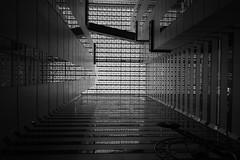 Shinjuku NS Building ceiling (tokyobogue) Tags: tokyo japan shinjuku nikon nikond7100 d7100 sigma sigma1750mmexdcoshsm blackandwhite blackwhite monochrome roof ceiling reflections lines windows