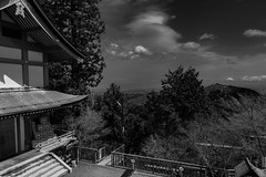 View from Mitake jinja (tokyobogue) Tags: tokyo japan hiking nikon nikond7100 d7100 sigma sigma1750mmexdcoshsm mountain mountains mitakesan odakesan nokogiriyama mitakejinja mitakeshrine shrine sky trees nature blackandwhite blackwhite monochrome
