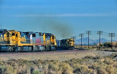 Hot rail at Hodge (rolfstumpf) Tags: usa california hodge bnsf santafe cajonsub trains railway railroad emd ge gp60 gp60b b408 sd402 atsf5038 fujichrome velvia