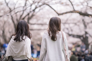 Female friends walking uder cherry blossoms