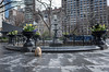 madison square park (Charley Lhasa) Tags: ricohgrii grii 183mm 28mm35mmequivalent iso400 ¹⁄₂₀₀₀secatf28 0ev aperturepriority pattern noflash s001122 dng cropped taken180419160235 uploaded180421010000 3stars flagged adobelightroomclassiccc73 lightroomclassiccc73 adobelightroom lightroom day madisonsquarepark newyork unitedstates us charley charleylhasa lhasaapso dog fountain rainyday msp nycparks citypark urbanpark flatirondistrict manhattan newyorkcity nyc ny tumblr180421 httpstmblrcozpjiby2xgzxr9