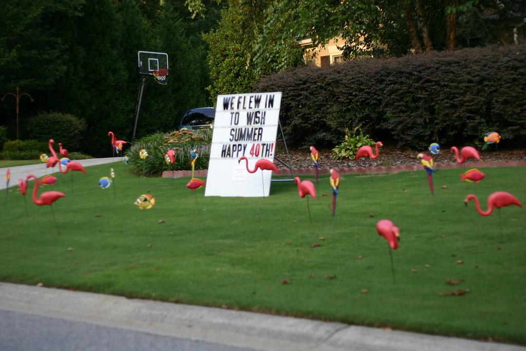 American Practical Joke - Plastic Lawn Flamingos
