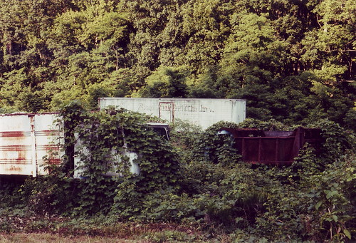 The Kudzu and the Garbage Truck # 1