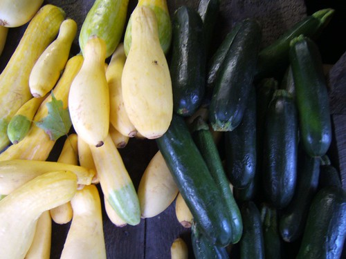 What's the difference between yellow squash and zucchini?