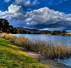 Wingham Brush - Manning River (Earlette) Tags: winter sky color colour water clouds river reeds landscape interestingness australia brush explore nsw newsouthwales hdr manning wingham fnmc midnorthcoast myfirsthdr manningriver artlibre