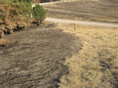 Picture 018 (Miles B.) Tags: county fire tail ne spotted fires complex dawes chadron milesbannan