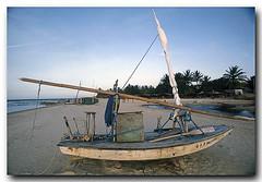 Jangada na paisagem (Z Lobato) Tags: brasil boat barco fortaleza cear raft woodenboat jangada traditionalwoodenboats