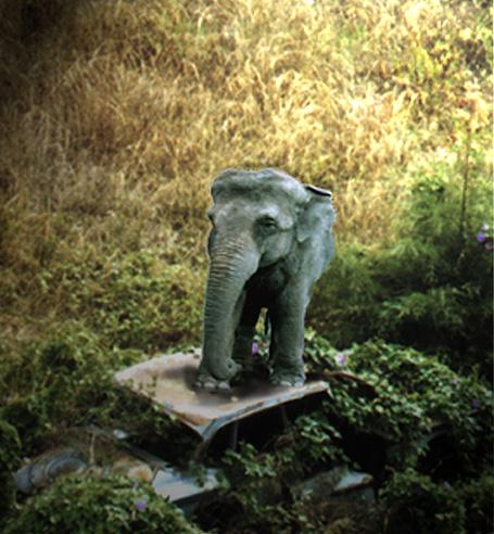 elephant-talk3