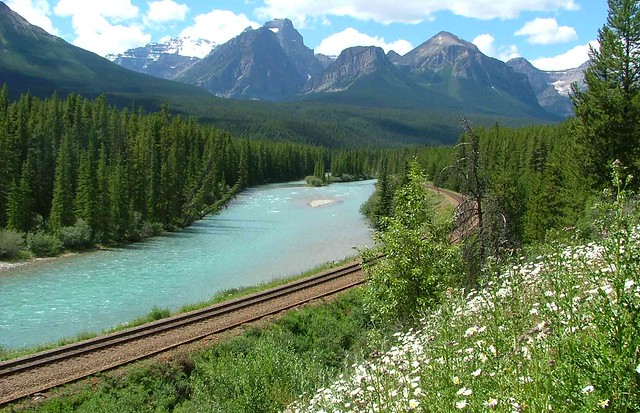 Bow River Parkway