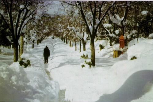 الجزائر العروس لما تكتسي بالثلوج