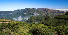 Mountain Madeira Central