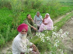 Sikh People (Manny Pabla) Tags: trip travel family flowers winter vacation people india heritage barn rural fun countryside asia village symbol farmers indian wheat sony prayer knife culture cybershot desi weapon mustard farms farmer dagger turban sikh agriculture punjab fennel agricultural punjabi aur singh panjabi beliefs northindia kaur pind banga sanctity panjab saini lasara rahon pabla balachaur nawanshahr phillaur urapar chakdana doaba mukandpur saroya garhshankar nawashahr nawanshahar nawashahar
