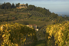 San Gimignano 5 (bgladman) Tags: travel italien italy nature photography countryside photo nikon europe italia d70 stock scenic explore tuscany lovely nikkor picturesque nikondigital italie tuscan   blgadman italiya brendangladman   a