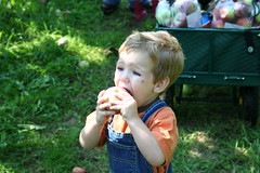 2006, September 16 180 (etienne.stgeorges) Tags: pomme pommier jrmy stjosephdulac