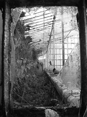 The House That Jack Built (RiCArdO JorGe FidALGo) Tags: old flowers light bw plants portugal ancient sony sintra greenhouse cpt estufa regaleira dsch2 artlibre fidalgo72 ilustrarportugal srieouro ricardofidalgo ricardofidalgoakafidalgo72